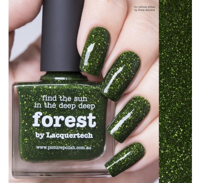 Picture Polish Forest
